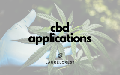 CBD Applications: How & When To Use CBD